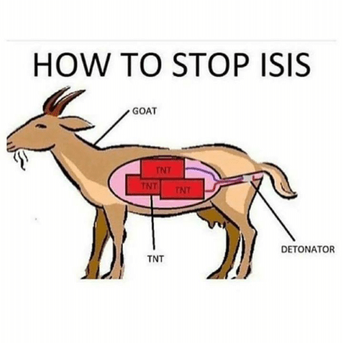 Isis, Memes, and Goat: HOW TO STOP ISIS  GOAT  DETONATOR  TNT