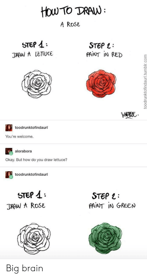 youre welcome: How TO TRAW  A ROSE  STEP  STEP  FAINT IN RED  DRAW A LETTUCE  toodrunktofindaurl  You're welcome.  alorabora  Okay. But how do you draw lettuce?  toodrunktofindaurl  STEP  DRAW AROSE  STEP  PAINT IN GREEN  toodrunktofindaurl.tumblr.com Big brain