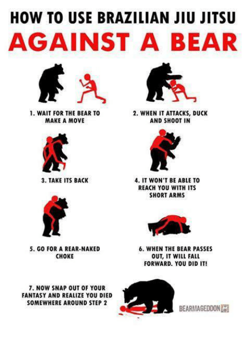Fall, Memes, and Bear: HOW TO USE BRAZILIAN JIU JITSU  AGAINST A BEAR  1. WAIT FOR THE BEAR TO  2, WHEN IT ATTACKS, DUCK  MAKE A MOVE  AND SHOOT IN  3. TAKE ITS BACK  4. IT WON'T BE ABLE TO  REACH YOU WITH ITS  SHORT ARMS  5. G0 FOR A REAR-NAKED  6. WHEN THE BEAR PASSES  CHOKE  OUT, IT WILL FALL  FORWARD. YOU DID IT!  7. NOW SNAP OUT OF YOUR  FANTASY AND REALIZE YOU DIED  SOMEWHERE AROUND STEP 2  BEARMAGEDDONM