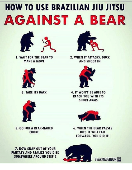 Fall, Memes, and Bear: HOW TO USE BRAZILIAN JIU JITSU  AGAINST A BEAR  1. WAIT FOR THE BEAR TO  2. WHEN IT ATTACKS, DUCK  MAKE A MOVE  AND SHOOT IN  3. TAKE ITS BACK  4. IT WON'T BE ABLE TO  REACH YOU WITH ITS  SHORT ARMS  S. GO FOR A REAR-NAKED  6. WHEN THE BEAR PASSES  CHOKE  OUT, IT WILL FALL  FORWARD. YOU DID IT!  7. NOW SNAP OUT OF YOUR  FANTASY AND REALIZE YOU DIED  SOMEWHERE AROUND STEP 2  BEARMAGEDDONESi