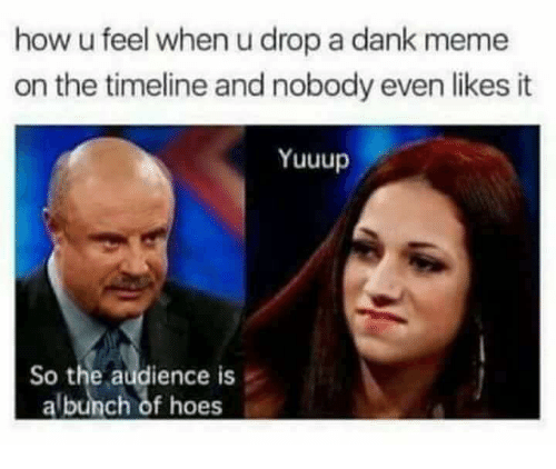 Dank Meme: how u feel when u drop a dank meme  on the timeline and nobody even likes it  Yuuup  So the audience is  albunch of hoes