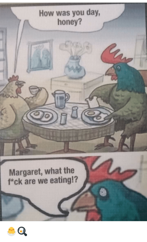 What The F: How was you day,  honey?  Margaret, what the  f*ck are we eating!? 🐣🍳
