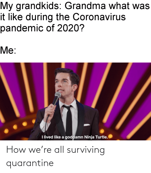surviving: How we're all surviving quarantine