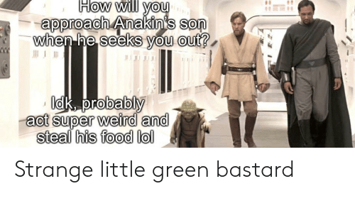 Green Bastard: How will you  approach Anakin's son  when he seeks you out?  Idk, probably  act super weird and  steal his food lol Strange little green bastard