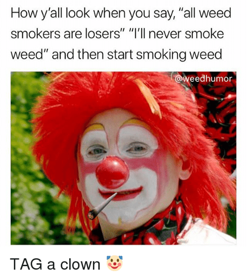 """Smoking, Weed, and Marijuana: How y'all look when you say, """"all weed  smokers are losers"""" """"I'll never smoke  weed"""" and then start smoking weed  @weedhumor TAG a clown 🤡"""