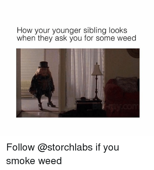 Weed, Trendy, and How: How your younger sibling looks  when they ask you for some weed Follow @storchlabs if you smoke weed