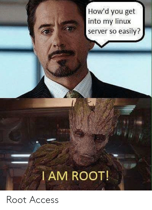 server: How'd you get  into my linux  server so easily?  I AM ROOT! Root Access