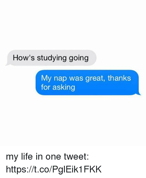 Life, Girl Memes, and Asking: How's studying going  My nap was great, thanks  for asking my life in one tweet: https://t.co/PglEik1FKK