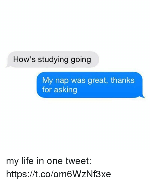 Life, Girl Memes, and Asking: How's studying going  My nap was great, thanks  for asking my life in one tweet: https://t.co/om6WzNf3xe