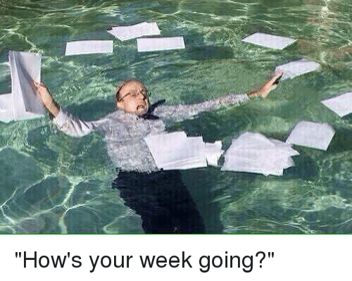 How 39 s your week going funny meme on sizzle for How s the fishing