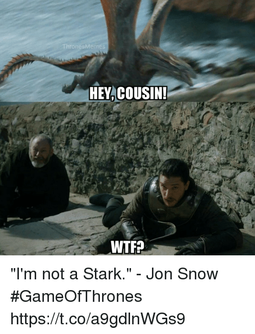 "Jon Snow, Snow, and Gameofthrones: hronesMeme  HEY,COUSIN ""I'm not a Stark."" - Jon Snow #GameOfThrones https://t.co/a9gdlnWGs9"
