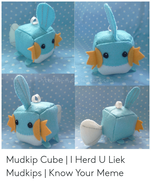 Know Your Meme Mudkip: http://oi-m.doviantart.com Mudkip Cube | I Herd U Liek Mudkips | Know Your Meme