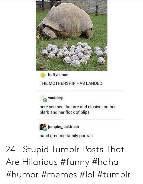 grenade: huffylemon  THE MOTHERSHIP HAS LANDED  vastderp  here you see the rare and elusive mother  blarb and her flock of blips  jumpingjacktrash  hand grenade family portrait 24+ Stupid Tumblr Posts That Are Hilarious #funny #haha #humor #memes #lol #tumblr