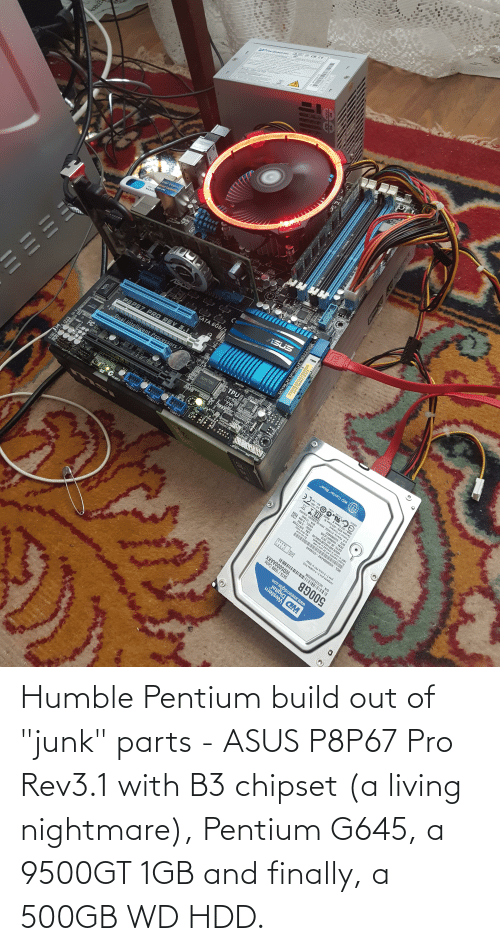 "junk: Humble Pentium build out of ""junk"" parts - ASUS P8P67 Pro Rev3.1 with B3 chipset (a living nightmare), Pentium G645, a 9500GT 1GB and finally, a 500GB WD HDD."