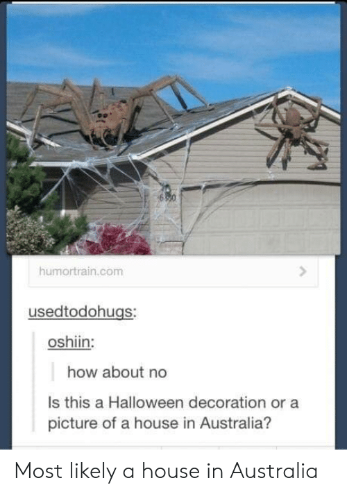 how about no: humortrain.com  usedtodohugs:  oshiin:  how about no  Is this a Halloween decoration or a  picture of a house in Australia? Most likely a house in Australia