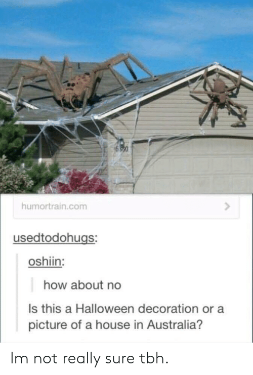 how about no: humortrain.com  usedtodohugs:  oshiin:  how about no  Is this a Halloween decoration or a  picture of a house in Australia? Im not really sure tbh.