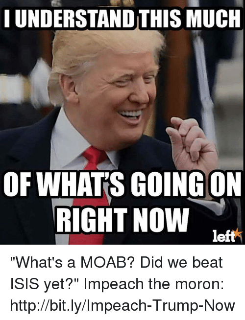 """Impeach Trump: HUNDERSTANDTHIS MUCH  OF WHATS GOING ON  RIGHT NOW  left """"What's a MOAB? Did we beat ISIS yet?""""  Impeach the moron: http://bit.ly/Impeach-Trump-Now"""