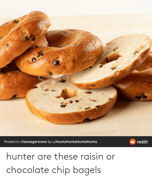 Chocolate Chip: hunter are these raisin or chocolate chip bagels