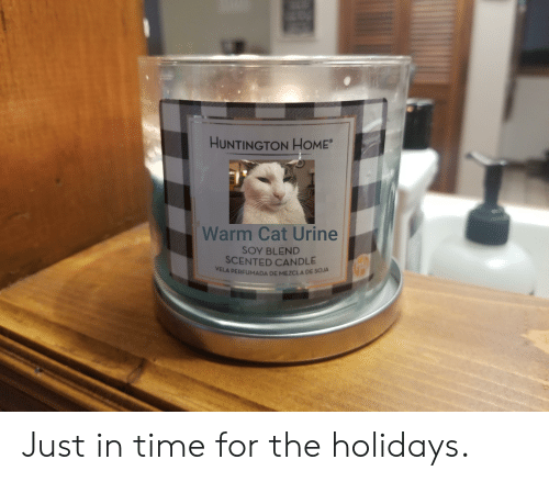 cat urine: HUNTINGTON HOME  Warm Cat Urine  SOY BLEND  SCENTED CANDLE  VELA PERFUMADA DE MEZCLA DE SOJA Just in time for the holidays.