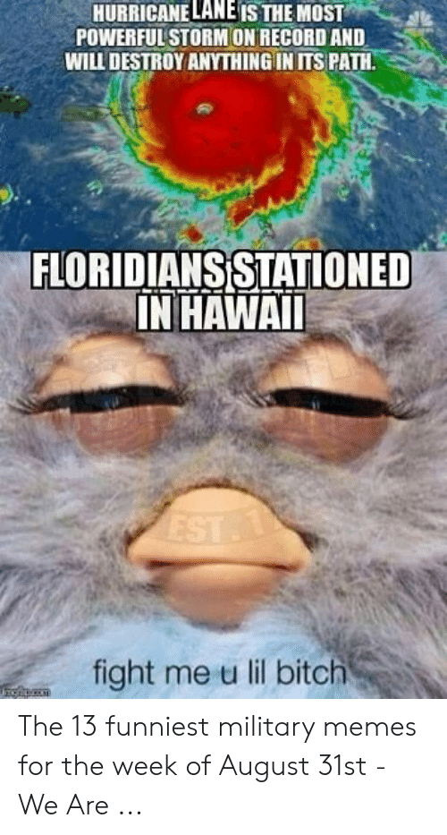 13 Funniest: HURRICANE LANE IS THE MOST  POWERFUL STORMON RECORD AND  WILL DESTROY ANYTHING IN ITS PATH.  FLORIDIANSISTATIONED  IN HAWAI  fight me u lil bitch The 13 funniest military memes for the week of August 31st - We Are ...