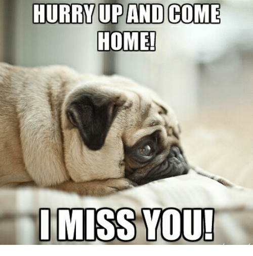 Memes, 🤖, and Miss: HURRY UP AND COME  HOME  I MISS YOU!