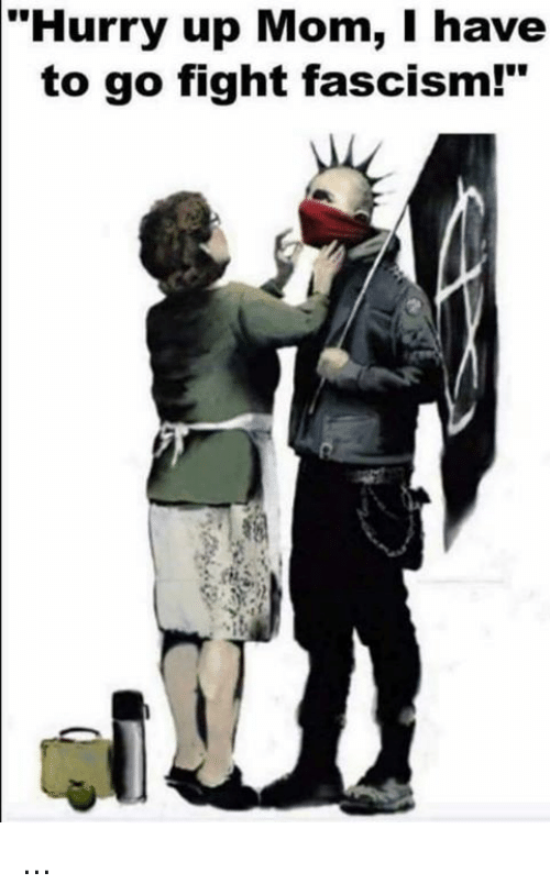 """Memes, Fascism, and Mom: """"Hurry up Mom, I have  to go fight fascism!"""" ..."""
