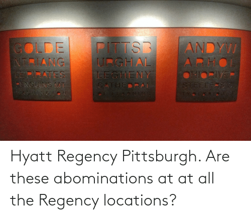 AT-AT: Hyatt Regency Pittsburgh. Are these abominations at at all the Regency locations?