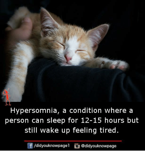 Memes, Sleep, and 🤖: Hypersomnia, a condition where a  person can sleep for 12-15 hours but  still wake up feeling tired.  /didyouknowpagel @didyouknowpage