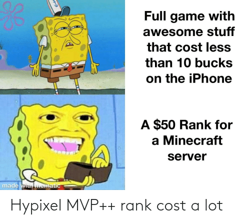 Cost: Hypixel MVP++ rank cost a lot