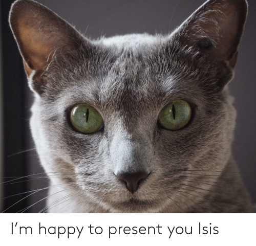 ISIS: I'm happy to present you Isis