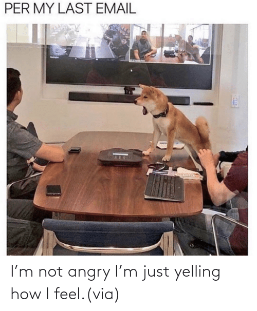 Angry: I'm not angry I'm just yelling how I feel.(via)
