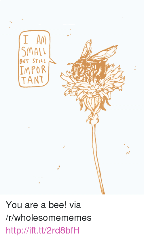 """Tant: I A  SMALL  BUT STILL  IMPOR  TANT <p>You are a bee! via /r/wholesomememes <a href=""""http://ift.tt/2rd8bfH"""">http://ift.tt/2rd8bfH</a></p>"""