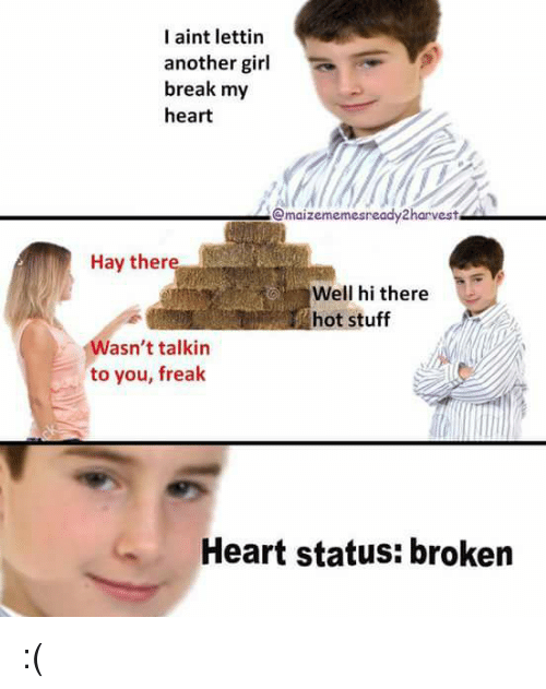 Memes, 🤖, and Hay: I aint lettin  another girl  break my  heart  Gmaizememesready harvest  Hay ther  Well hi there  hot stuff  Wasn't talkin  to you, freak  Heart status: broken :(