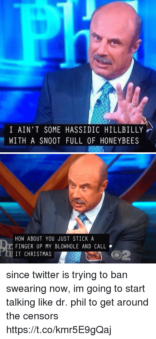 hillbilly: I AIN'T SOME HASSIDIC HILLBILLY  WITH A SNOOT FULL OF HONEYBEES   HOW ABOUT YOU JUST STICK A  r FINGER UP MY BLOWHOLE AND CALL  IT CHRISTMAS since twitter is trying to ban swearing now, im going to start talking like dr. phil to get around the censors https://t.co/kmr5E9gQaj