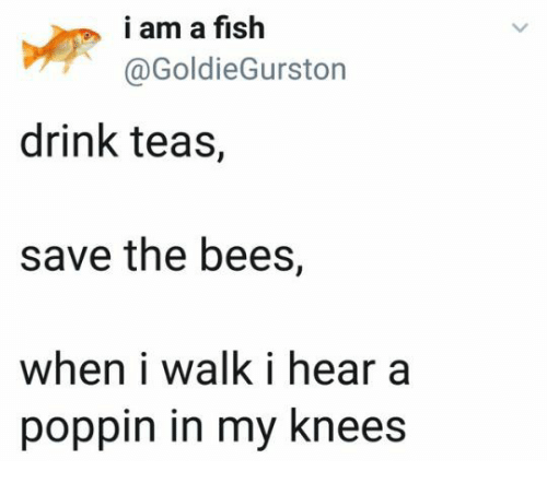 The Bees: i am a fish  @GoldieGurston  drink teas,  save the bees,  when i walk i hear a  poppin in my knees