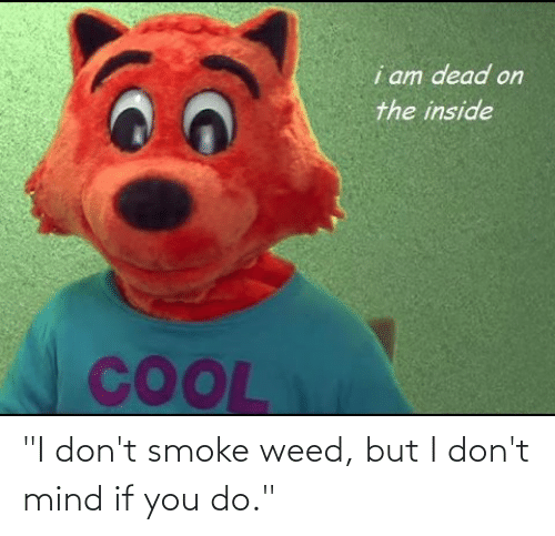 """I Dont Smoke Weed: i am dead on  the inside  COOL """"I don't smoke weed, but I don't mind if you do."""""""