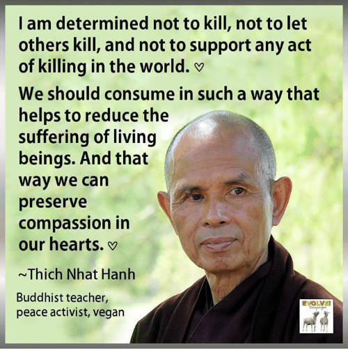 Kill The Buddha Quote: 25+ Best Memes About Vegan