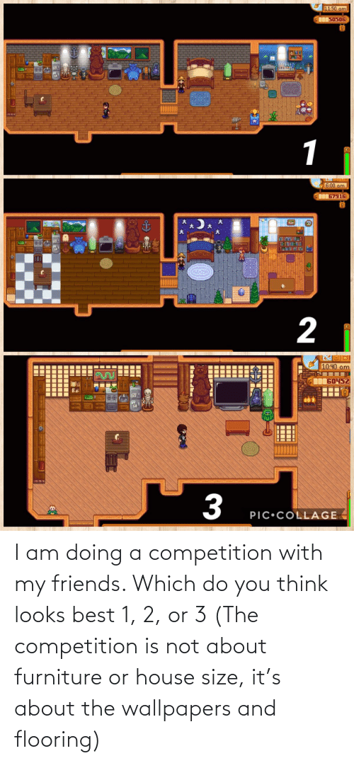 Size: I am doing a competition with my friends. Which do you think looks best 1, 2, or 3 (The competition is not about furniture or house size, it's about the wallpapers and flooring)