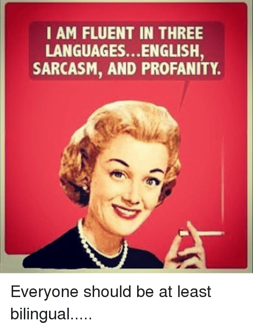 i am fluent in three languagesenglish sarcasm and profanity everyone should be at least