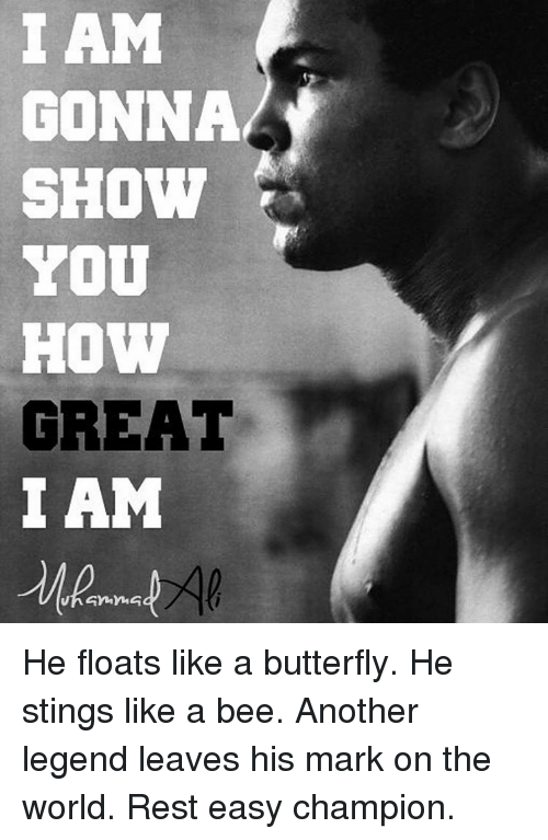 sting like a bee: I AM  GONNA  SHOW  YOU  HOW  GREAT  I AM He floats like a butterfly. He stings like a bee. Another legend leaves his mark on the world. Rest easy champion.