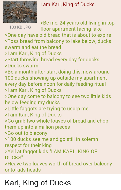 """Karl King Of Ducks: I am Karl, King of Ducks.  >Be me, 24 years old living in top  183 KB JPG  floor apartment facing lake  >One day have old bread that is about to expire  >Toss bread from balcony to lake below, ducks  swarm and eat the bread  >I am Karl, King of Ducks  >Start throwing bread every day for ducks  >Ducks swarm  >Be a month after start doing this, now around  100 ducks showing up outside my apartment  every day before noon for daily feeding ritual  I am Karl, King of Ducks  >One day come to balcony to see two little kids  below feeding my ducks  >Little faggots are trying to usurp me  >I am Karl, King of Ducks  >Go grab two whole loaves of bread and chop  them up into a million pieces  >Go out to blacony  >100 ducks see me and go still in solemn  respect for their king  >Yell at faggot kids """"I AM KARL, KING OF  DUCKS  >Heave two loaves worth of bread over balcony  onto kids heads Karl, King of Ducks."""