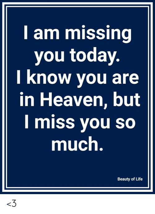 i miss you so much: I am missing  you today  I know you are  in Heaven, but  I miss you so  much  Beauty of Life <3