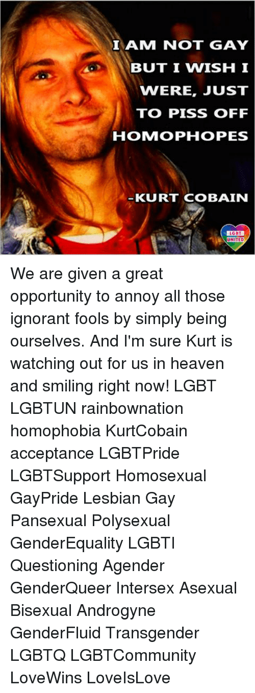 Heaven, Ignorant, and Lgbt: I AM NOT GAY  BUT I WISH I  VNERE, JUST  TO PISS OFF  HOMOPHOPES  KURT COBAIN  LGBT  NITED We are given a great opportunity to annoy all those ignorant fools by simply being ourselves. And I'm sure Kurt is watching out for us in heaven and smiling right now! LGBT LGBTUN rainbownation homophobia KurtCobain acceptance LGBTPride LGBTSupport Homosexual GayPride Lesbian Gay Pansexual Polysexual GenderEquality LGBTI Questioning Agender GenderQueer Intersex Asexual Bisexual Androgyne GenderFluid Transgender LGBTQ LGBTCommunity LoveWins LoveIsLove