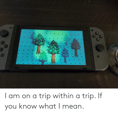 if you know what i mean: I am on a trip within a trip. If you know what I mean.