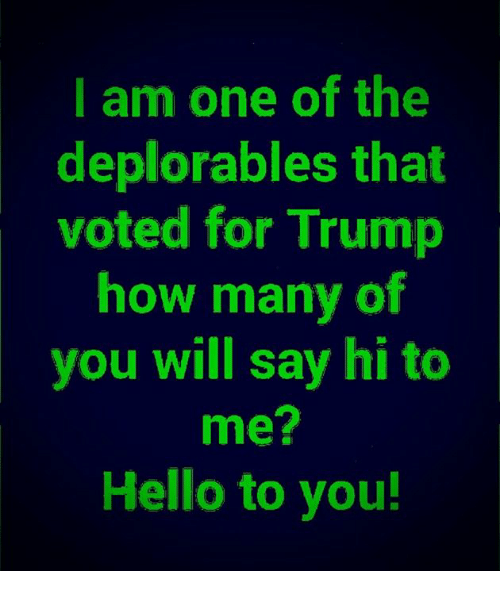 Deplorables: I am one of the  deplorables that  voted for Trump  how many of  you will say hi to  me?  Hello to you!