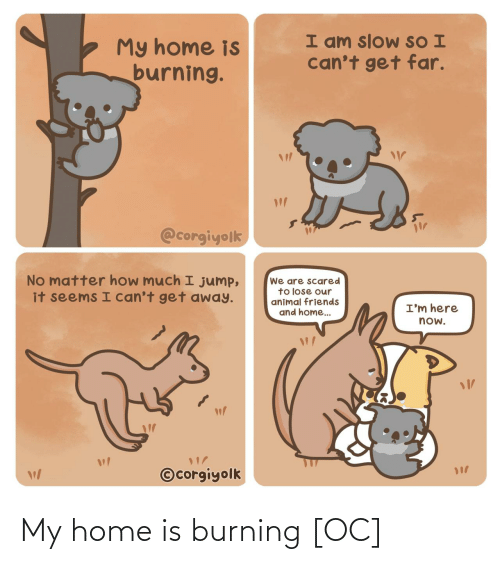 How Much: I am slow SO I  can't get far.  My home is  burning.  @corgiyolk  No matter how much I jump,  it seems I can't get away.  We are scared  to lose our  animal friends  and home..  I'm here  now.  ©corgiyolk My home is burning [OC]