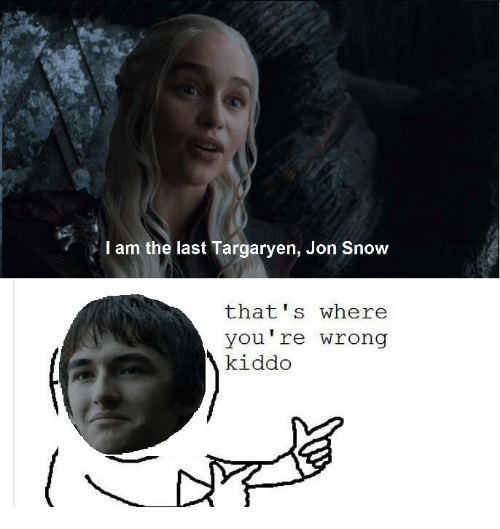 Memes, Jon Snow, and Snow: I am the last Targaryen, Jon Snow  that s where  you're wrong  kiddo