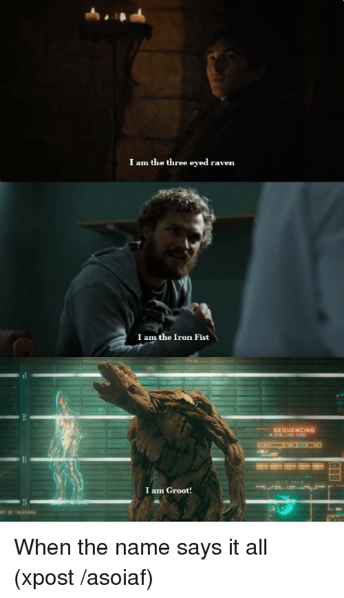 i am groot: I am the three eyed raven  I am the Iron Fist  SEQUENCING  I am Groot!  NTOF TALUHNİA <p>When the name says it all (xpost /asoiaf)</p>
