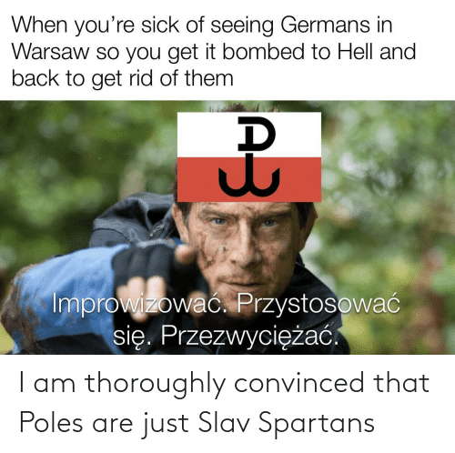 spartans: I am thoroughly convinced that Poles are just Slav Spartans