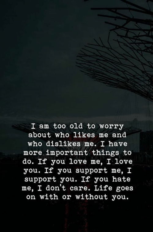 You Hate Me: I am too old to worry  about who likes me and  who dislikes me. I have  more important things to  do. If you love me, I love  you. If you support me, I  support you. If you hate  me, I don't care. Life goes  on with or without you.
